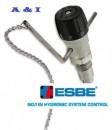 Termostat cu lant ESBE ATA 212 - 3/4''