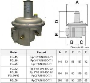 Poza Regulator gaz cu filtru FG1B