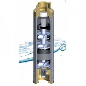 Poza Sectiune pompa submersibilia Panelli 95 PR2 N
