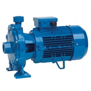 poza Pompa centrifuga SPERONI 2C 32/215A - 120 mCA