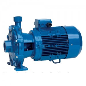 poza Pompa centrifuga SPERONI 2C 40/180D - 60 mCA