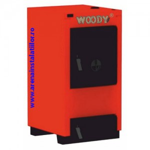 poza Cazan pe combustibil solid Hoterm Woody Carbon M 35 - 35 kW