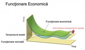 Poza Functionare economica