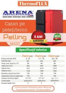 Poza Caracteristici Cazane pe peleti si lemn ThermoFLUX Pelling