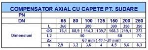 Poza Dimensiuni compensator axial cu capete pentru sudura DN100
