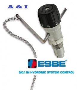 poza Termostat cu lant ESBE ATA 212 - 3/4''